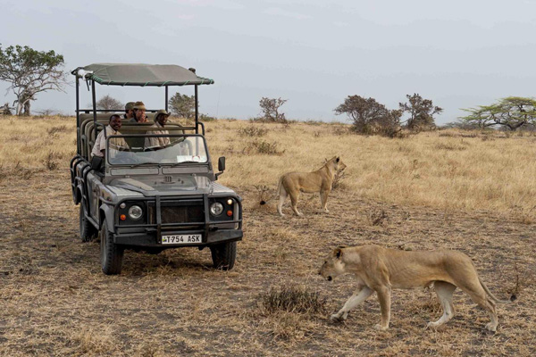 Lake Manze Camp game drive