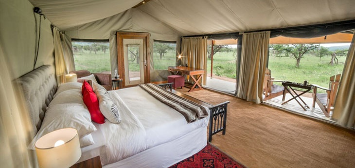Picture of Serengeti Tented
