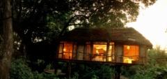 Lake Manyara Tree Lodge - bedroom