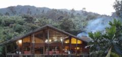 Mahogany Springs