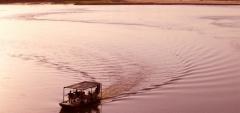 Rufiji River Camp - Rufiji River