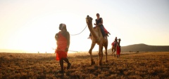 Lewa Safari Camp - camel ride