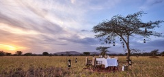 Legendary Serengeti Mobile Camp - Dinner in the bush