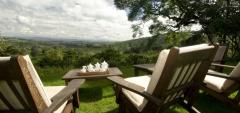 Gibbs Farm - view