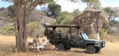 Nimali Camp - Game Drive