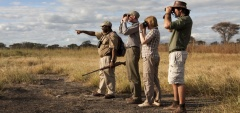 Olivers Camp - Walking safari