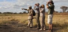 Olivers Camp - Walking safari