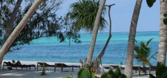 Pongwe Beach Club - Pool
