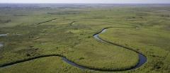 Okavango Delta Concessions