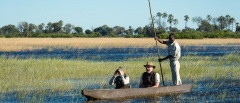 Mokoro in the Okavango Delta