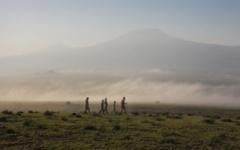 Amboseli - walking safari