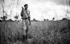 South Luangwa National Park - Ranger