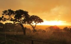 Tanzania - Landscape