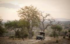 Tanzania - Sand Rivers