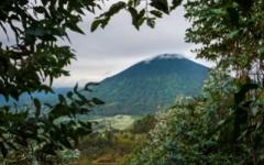 Rwnda Landscape